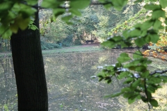 Ravensbosch-001-Vijver