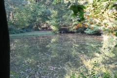 Ravensbosch-002-Vijver