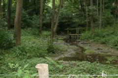Eys-Waterwingebied-Roodborn-1