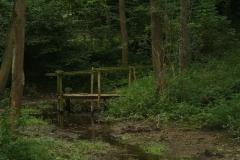 Eys-Waterwingebied-Roodborn-2