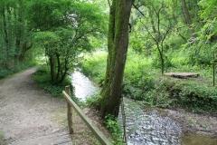 Eys-Waterwingebied-Roodborn-4