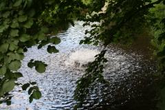 Sint-Truiden-185-Opborrelend-water