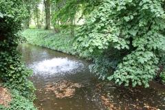 Sint-Truiden-186-Opborrelend-water